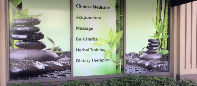 Acupuncture & Herbal Therapies | St Petersburg Acupuncture
